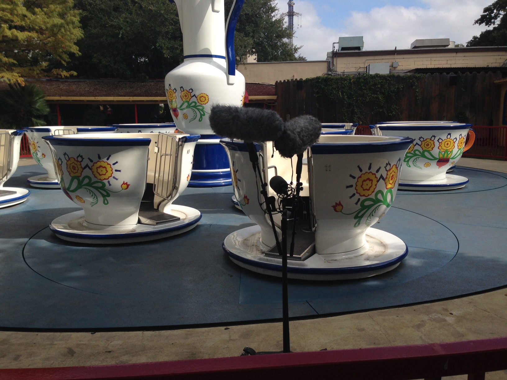 lcr on teacups
